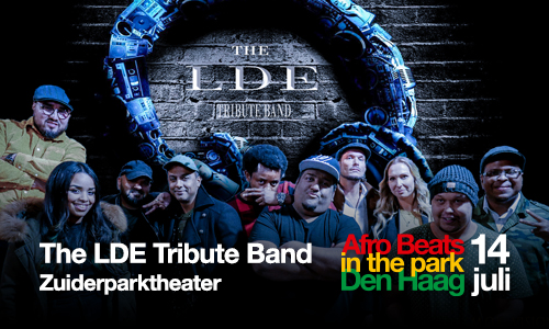 the lde tribute band img 1